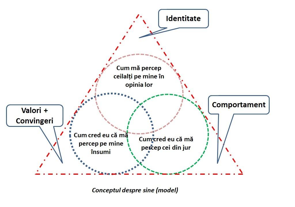 sursa:www.imaginea-de-sine.blogspot.com