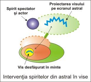 14.spirite_in_vise